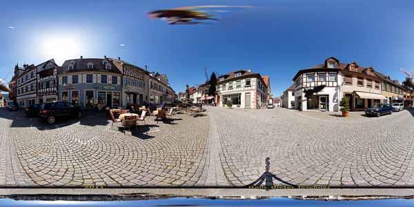 Gernsbach_016_spinne